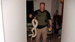 Carousel_image_d3630dc5e8847bbdc259_snakes