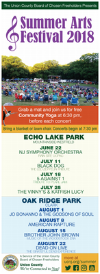 NJSO and Summer Arts Festival Flyer.png