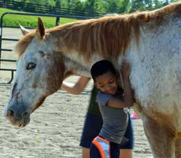 Carousel image da5836e11e29b821ed20 sprin therapy horse