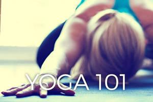 Yoga 101.jpg