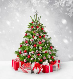 Carousel_image_db00d1acbd157321c56b_cc_christmas_tree