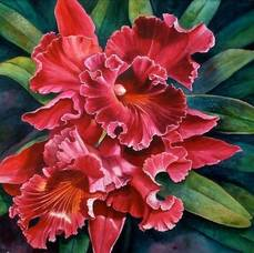 orchids - watercolor