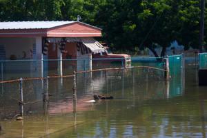 Carousel_image_e246293d9a25ee488802_fema_-_39079_-_flooded_neighborhood_in_puerto_rico