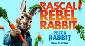 Carousel image e30381dcd6c1c72cfd55 family flix peter rabbit