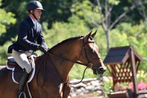 Carousel image e3a4167e3e24bb55fb3a jared vermont horse show