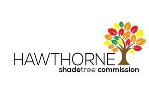 Carousel_image_e5c4c5e315cd5f35b1eb_hawthorne_shade_tree_commission_logo