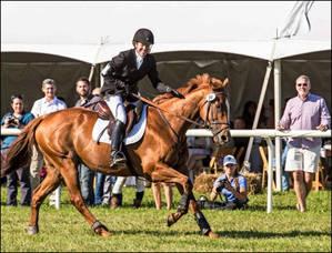 Carousel image f541fc25559984bc0b28 essex horse trials17