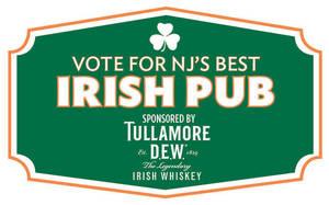 Carousel_image_f8410dbfc87310701e07_best-irish-pub-logo-web2