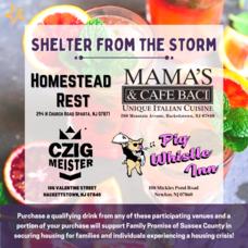 Carousel_image_fa46184cc53788c6e0c8_shelter_from_the_storm_social_media