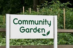 Carousel image fa93c48a54c60e936b3c community garden sign2