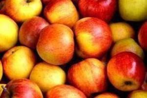 Carousel_image_fdc325eac1029b1c84d7_5bfabad613854d7927e5_carousel_image_1b30fe0c26eac3eab632_apple-fruit-fruits-delicious-162806