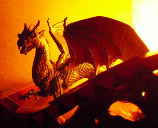 2374ff2675fc97b1b704_dragons___shoes_009.JPG