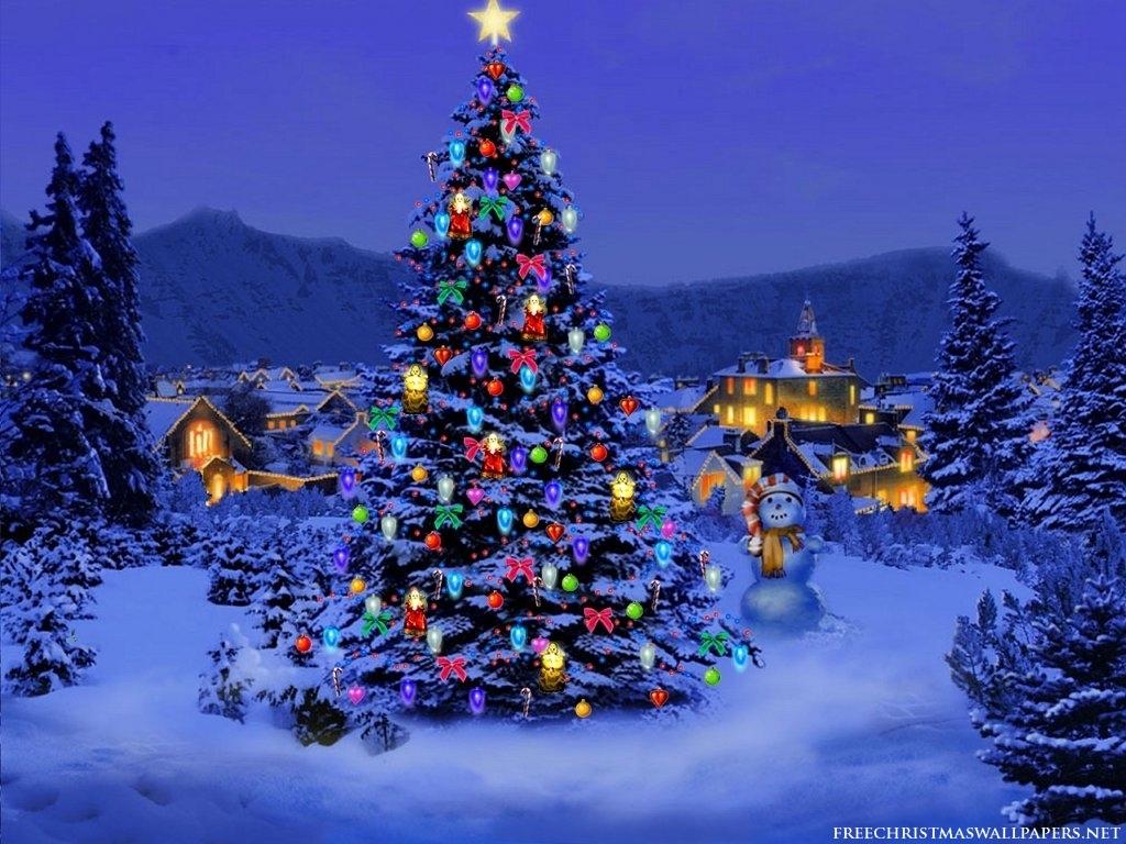 d655439d8224313ebe22_Christmas-Tree.jpeg