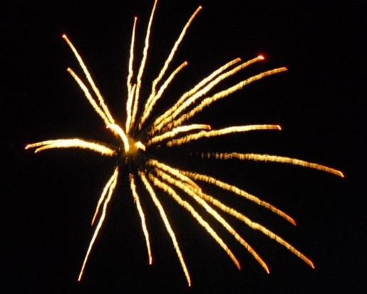 90258aa9c11469df8811_Fireworks-yellow_spider.jpg