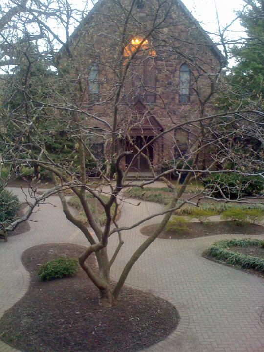 99bad1da0dfcb50c198a_History_Courtyard.jpg