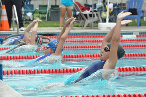 Swimmers take off during one of the backstroke heats.