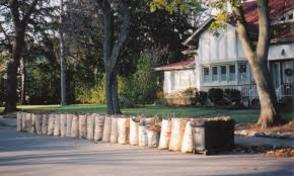Curbside Leaf Collection Begins October 7, photo 1