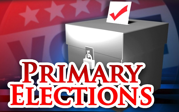 6a162e46d3f30f1b78c4_primary-elections.jpg