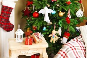 Carousel_image_ba970f3ef7f82ac52477_christmas_6