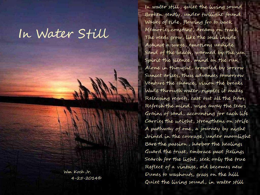 b9ca2f5ad49d1f30209a_In_Water_Still.jpg