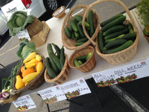 Fresh vegetables from Murph Farm