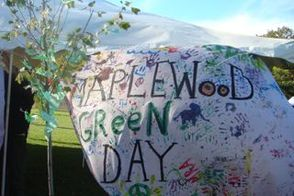 Maplewood Green Day Fair