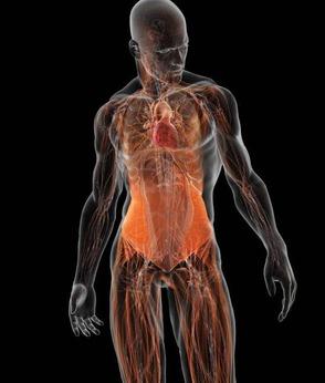 Body Core