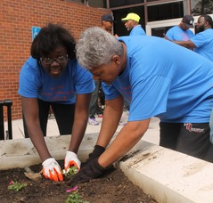 Roselle Comes Together for Community Clean Up Day, photo 4