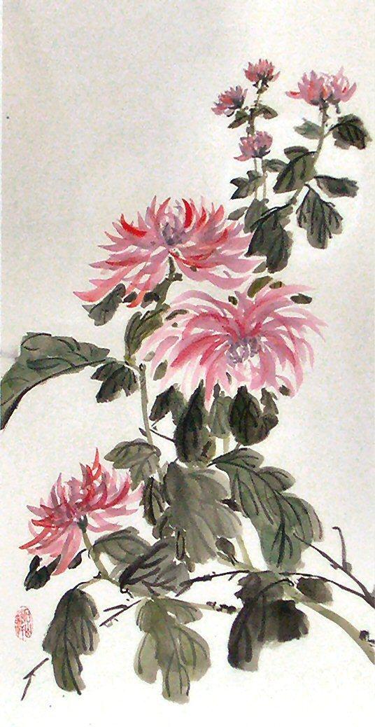 de33db6d33c564ed974b_Chrysanthemum.JPG