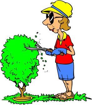 Carousel_image_f487f680d316cda8fdac_56eb3104386f8f3e4071_gardening_club