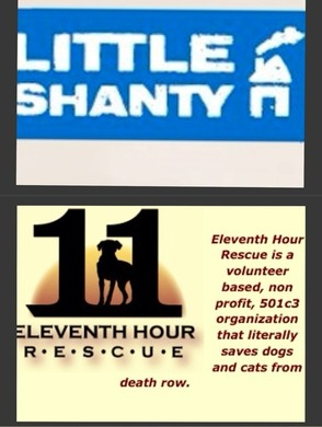 Little Shanty And Eleventh Hour Rescue Team Up To Save Homeless Dogs And Cats, photo 1