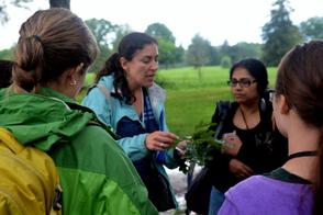 Professor Shebitz Identifies Trees and Plants