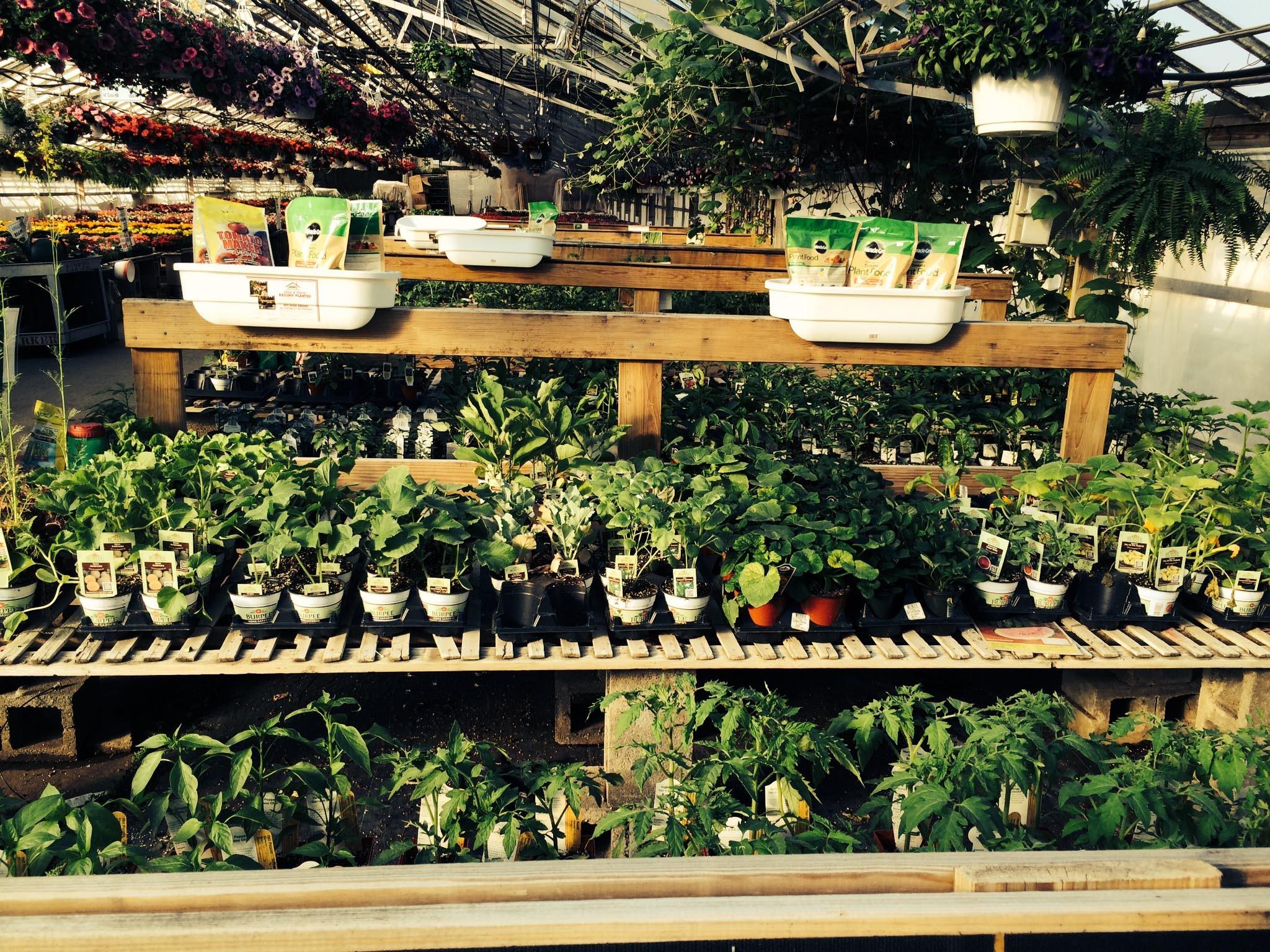 e4dae52a691b68e4d754_Parker_Gardens_-_veggies.jpg