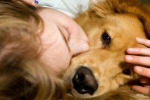 d575c7a935904bcf4213_Dogs-comfort-us-300x200.jpg