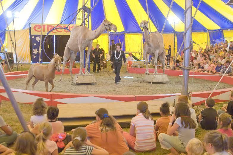 7a461401ba7d114037af_July_4_circus.jpg