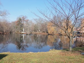 Mindowaskin Park in downtown Westfield offers an idyllic place to walk and enjoy nature.