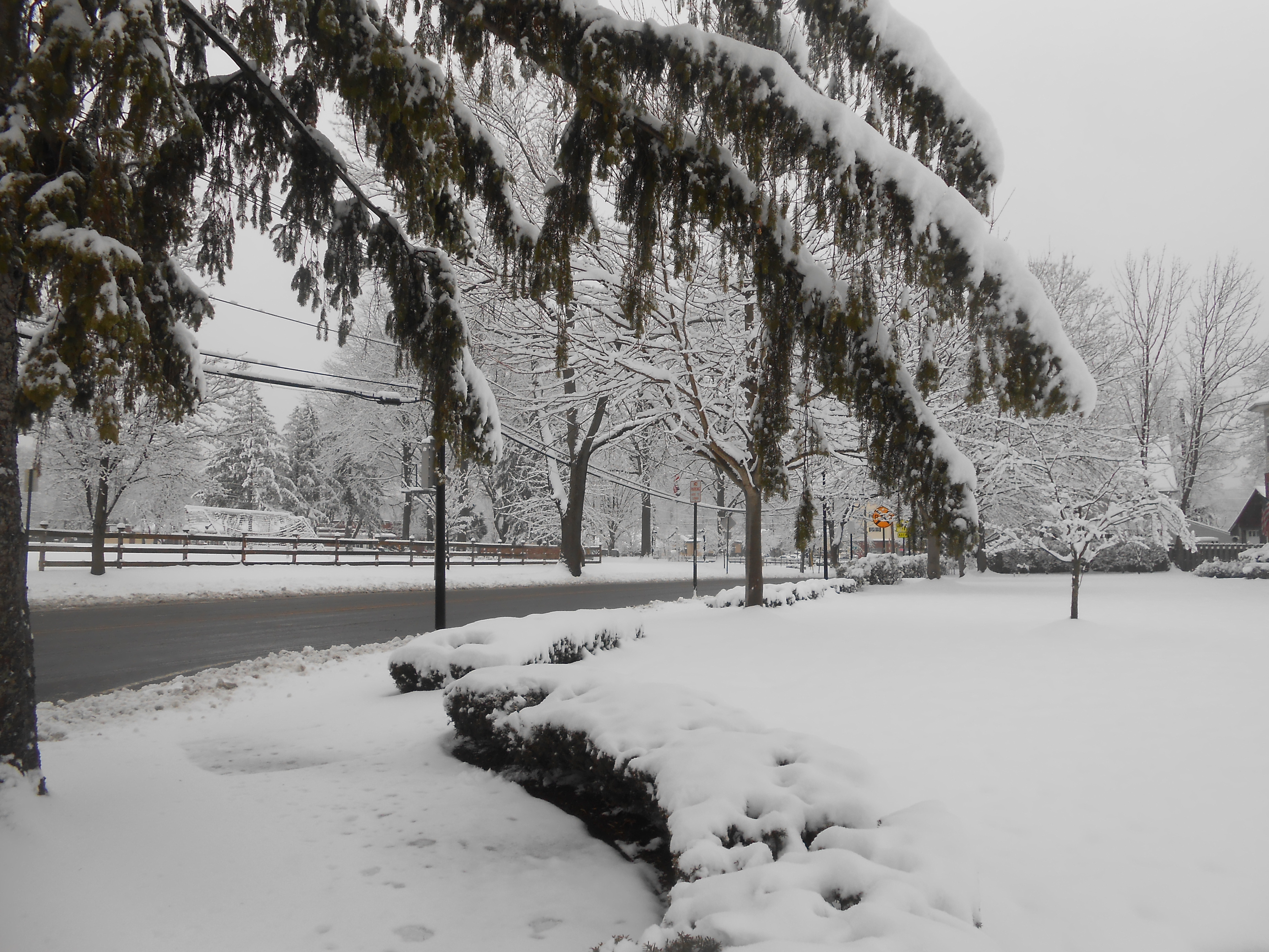 1ff000fd572bad440dc6_snow.jpg