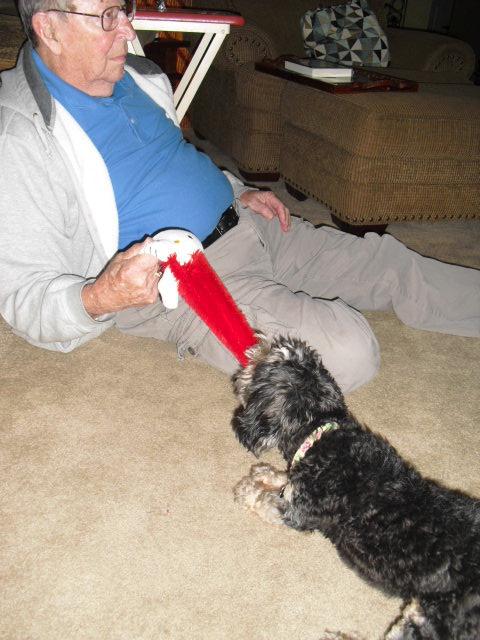afd1da70aad53bc8d64b_Winnie_playing_with_grandpa.jpg
