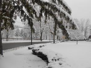 Carousel_image_1ff000fd572bad440dc6_snow