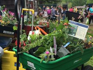Carousel_image_55da3e2fc7bd5b8e3321_spring_garden_fair