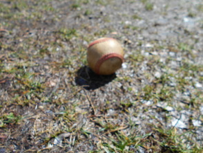 Dodger Field of Dreams Still Too Wet for Baseball Opener, photo 1