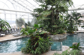 The Biosphere Pool at Crystal Springs Resorts.
