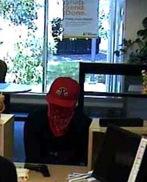 Bandit Shows Gun in Robbery of First Niagara Bank in Hilltown Monday Afternoon, photo 1