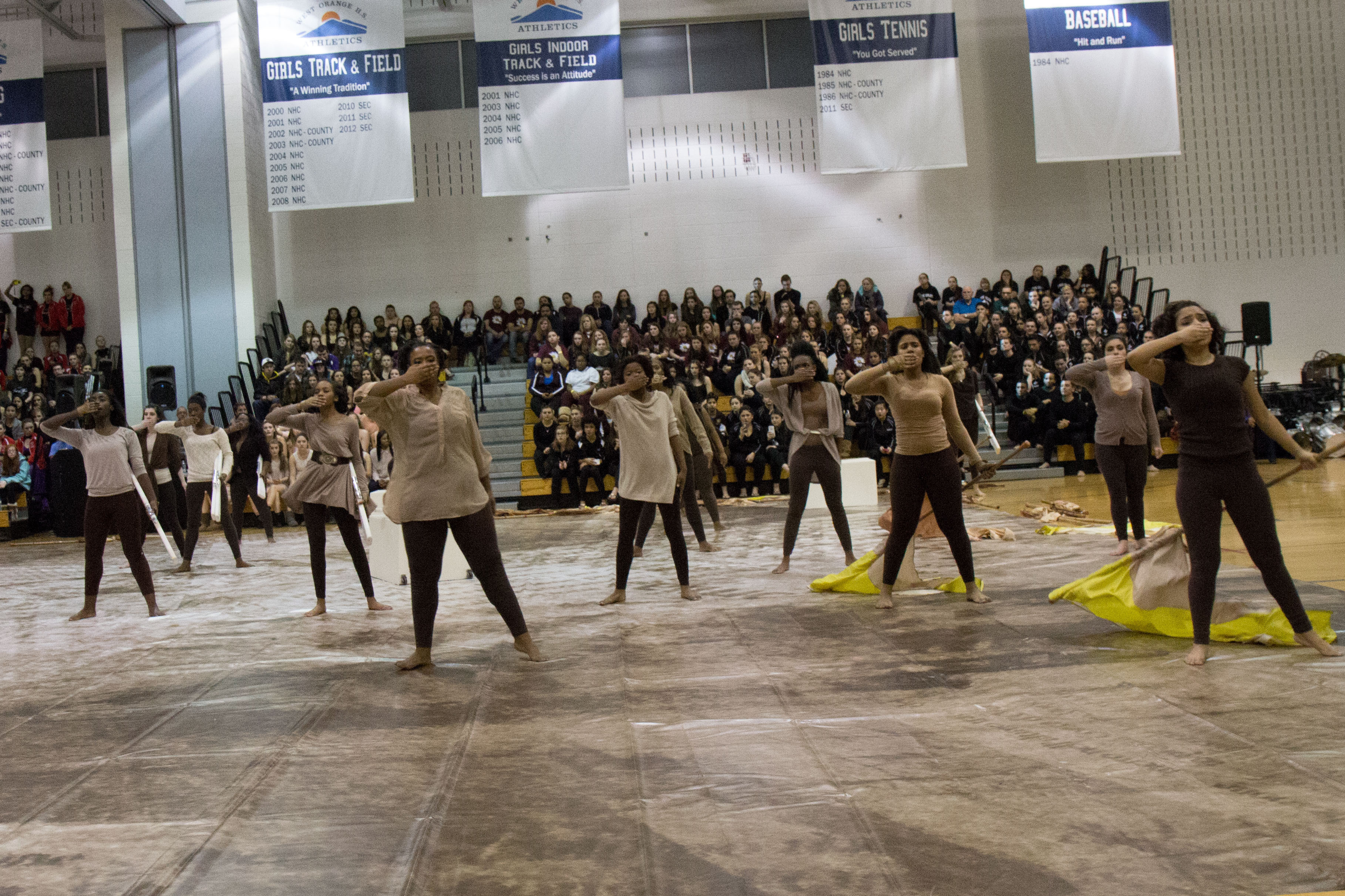 Articles about color guard - Credits David Adelsohn