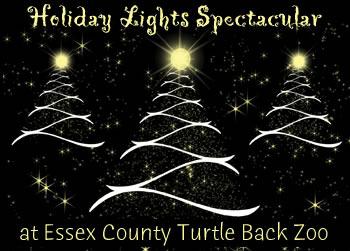 b353dd62d4abccb07fdd_holiday_lights2-turtle-back-zoo.jpg