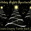 Small_thumb_b353dd62d4abccb07fdd_holiday_lights2-turtle-back-zoo