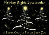 Thumb_b353dd62d4abccb07fdd_holiday_lights2-turtle-back-zoo