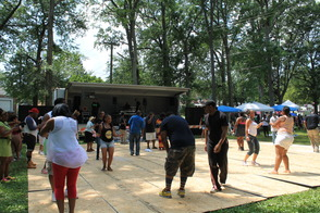 Community Enjoys 2014 Roselle House Music Festival, photo 3