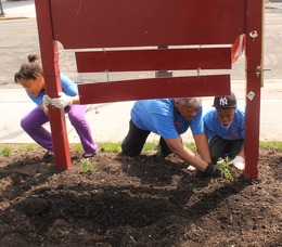 Roselle Comes Together for Community Clean Up Day, photo 33