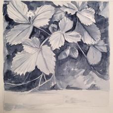 Carousel_image_815b0b3c09670b5e3939_strawberries_watercolor